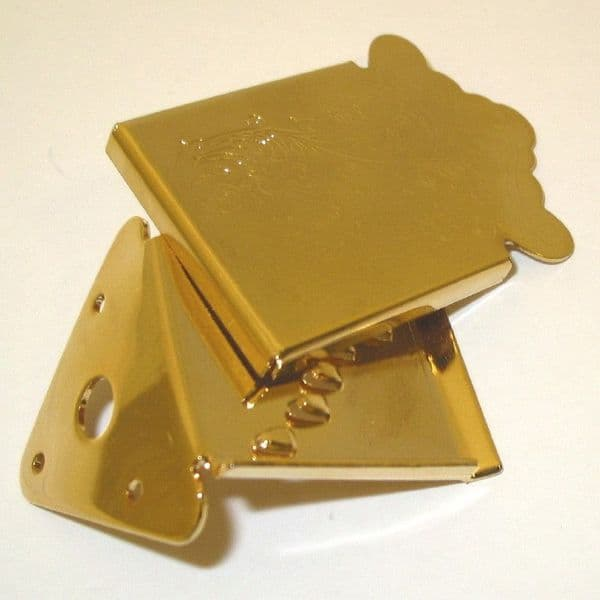 Mandolin Tailpieces Gibson Style-Engrave cover plate, gold  Brown Dog Banjos